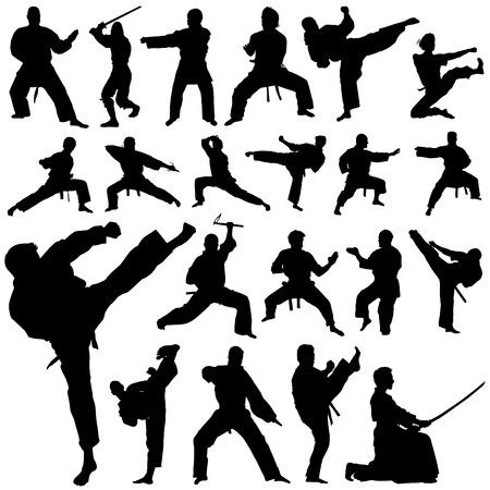 karate fighter: set of fighter