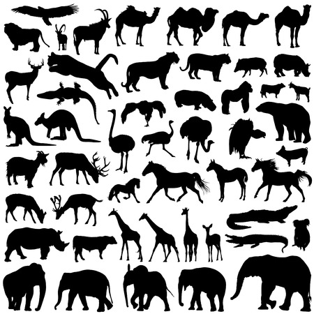 animal silhouettes Stock Vector - 8333903