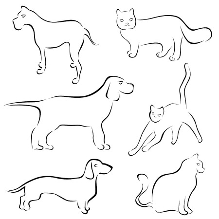 dog and cat designs  Vector