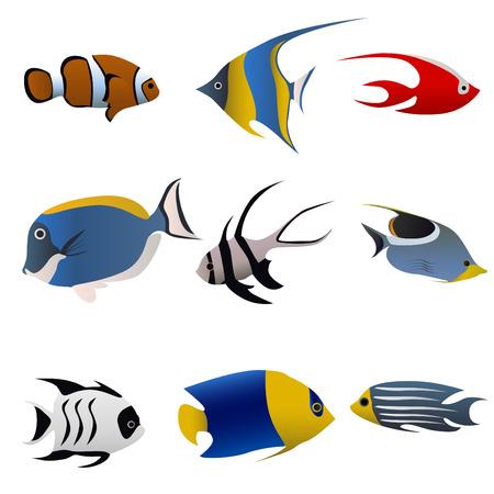 saltwater fish: pesci tropicali  Vettoriali