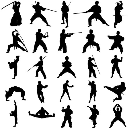 martial art: set of fighter