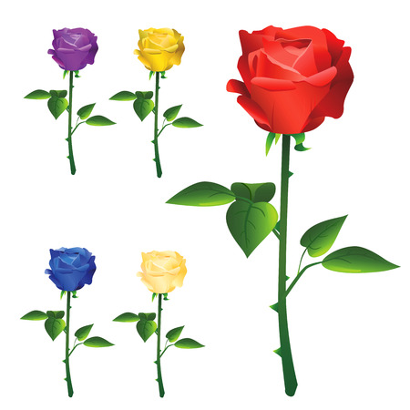 rose vector  Stock Vector - 8497776