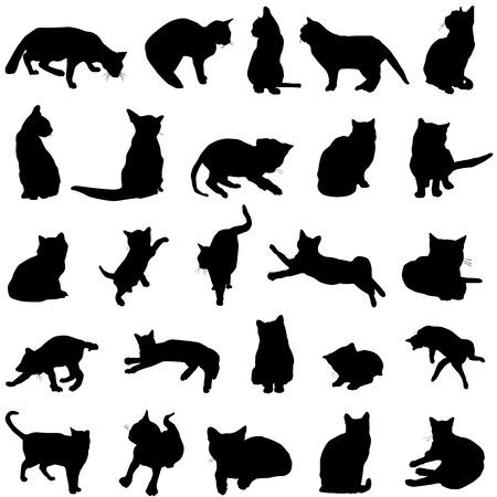silueta de gato: vector de gato Vectores