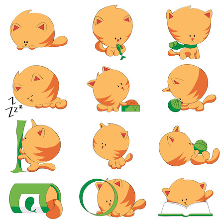 cute cat different positions  Vector