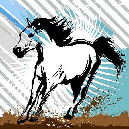 horse design vector  Vector