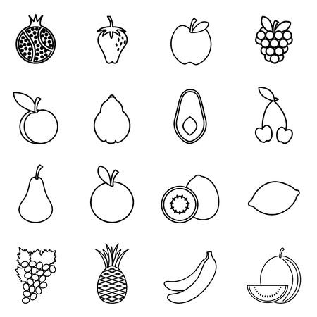 avocados: fruit icon set