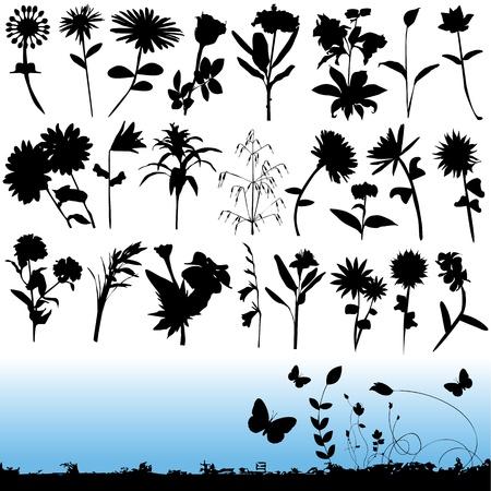 flower Stock Vector - 9196358