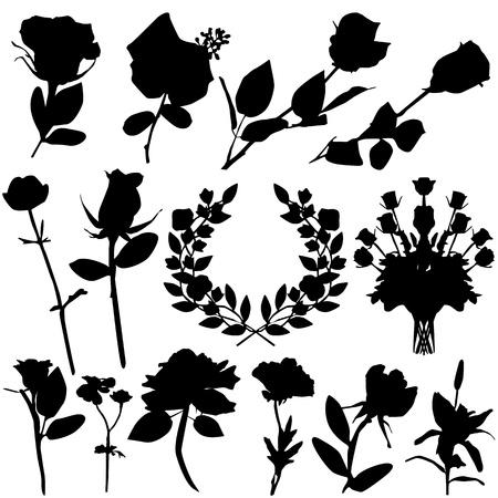 valentine rose vector  Vector