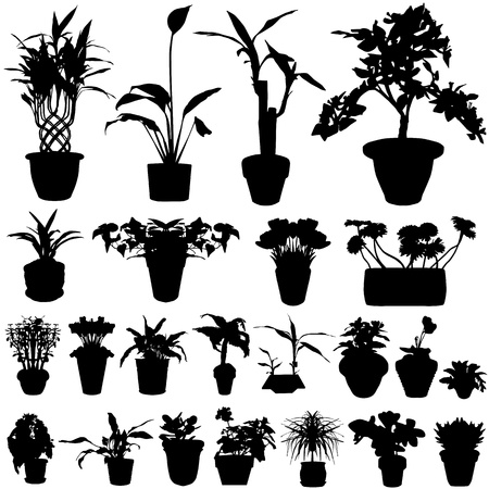 haus garten: Blume Vektor