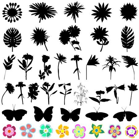 conjunto de flores y mariposas