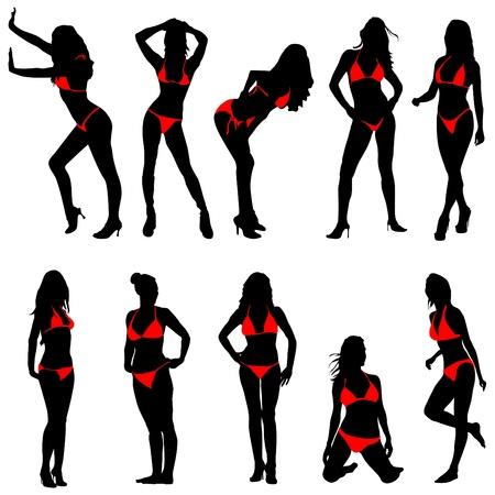 beautiful breasts: set of bikini woman  Illustration