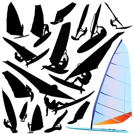 wind surfing vector  Vector