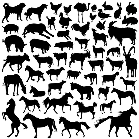 duck silhouette: collection of farm animal vector