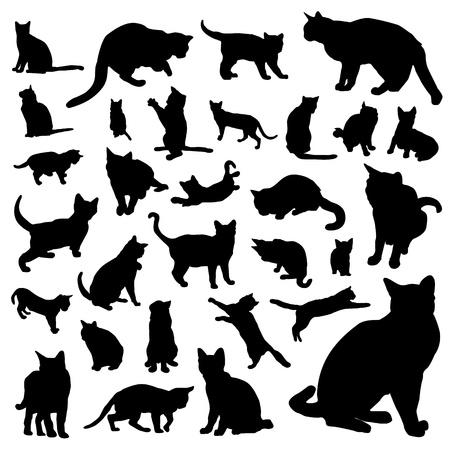colección de vectores de gato