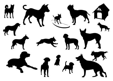 boxer dog: set of dog vector