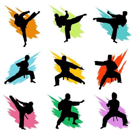 karate fighter: fighting Illustration