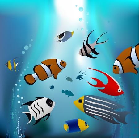 cartoon tropical fishes  Vector