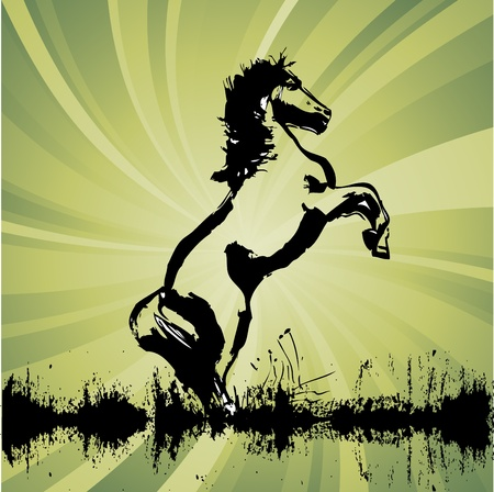 whirlwind: horse