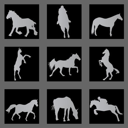 horse Stock Vector - 10182896