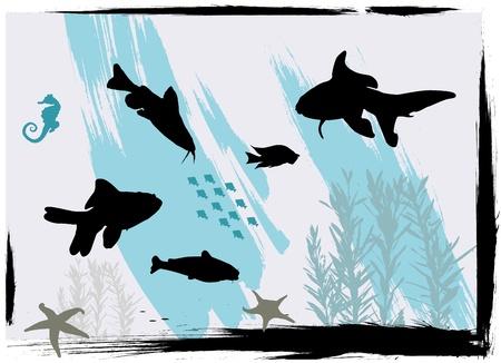 plunging: aquarium