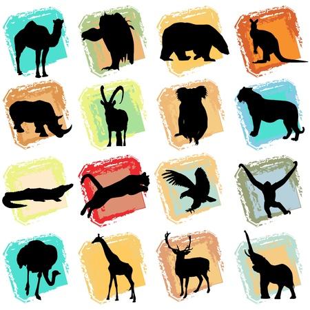 wild animals Vector
