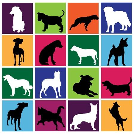 dalmatier: hond set Stock Illustratie