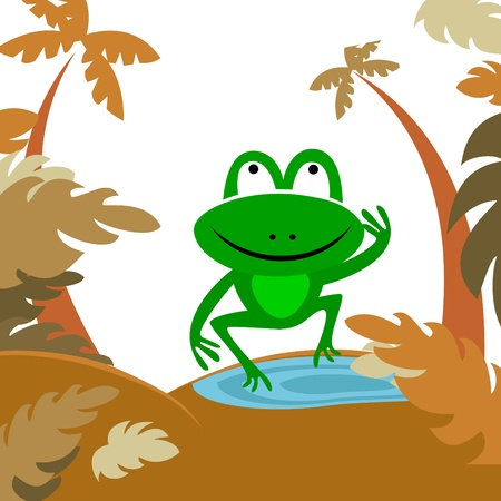 tree frogs: frog in forest.