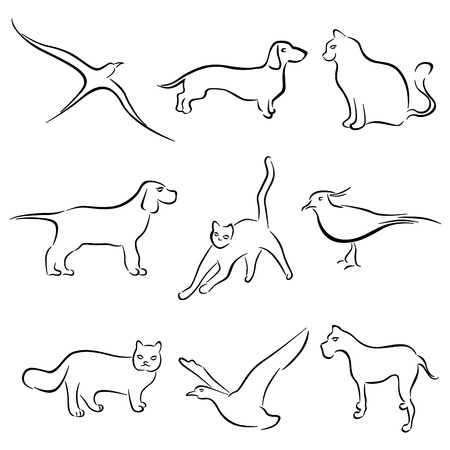 dog outline: dog, cat, rabbit animal drawing vector
