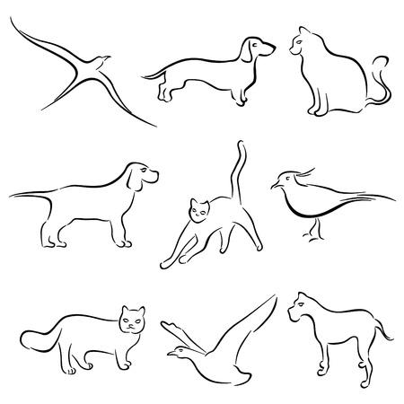 contorno: perro, gato, animal vector dibujo de conejo