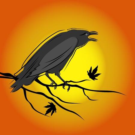 birds in flight: crow