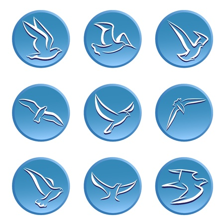 bird icon set Vector