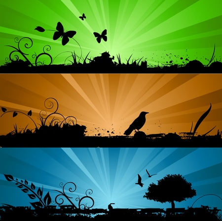 sun flowers: nature background with lighting Illustration