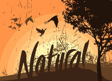 natural background Stock Vector - 11519029