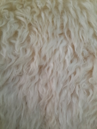 sheepskin: Fondo de piel de oveja
