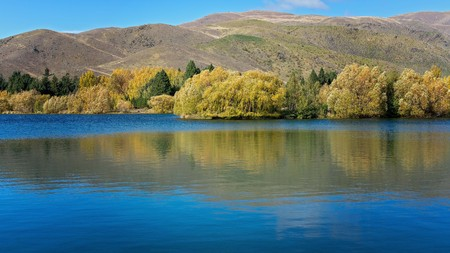 Water reflections of trees with yellow leaves along the shore of Lake Hayes New Zealand in autumn 写真素材