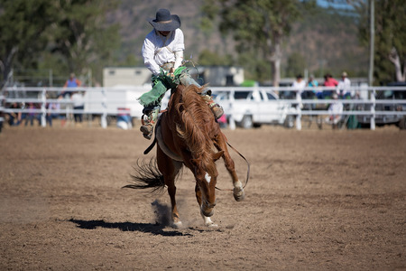 Cowboy rides a bucking horse in bareback bronc event at a country rodeo. Redakční