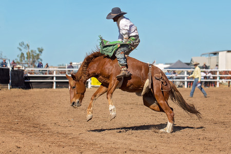 Cowboy rides a bucking horse in bareback bronc event at a country rodeo