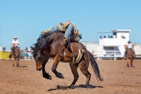 cowboy rides a bucking horse in bareback bronc event at a country rodeo Editorial