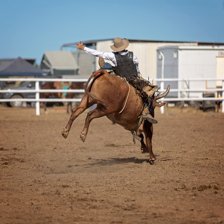 Cowboy riding a bucking bull in a competition at a country rodeo