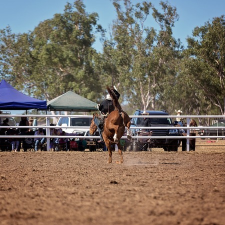 Cowboy riding a bucking bronc horse in rodeo competition Stock Photo