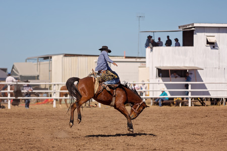 Cowboy riding a bucking bronc horse in a rodeo competition in Australia