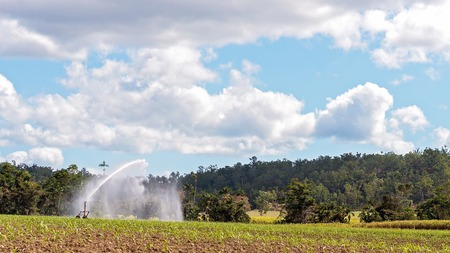 A travel irrigation system used for water a crop of sugar cane