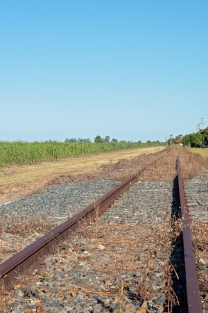 Old abandoned country railway tracks left to become overgrown with weeds