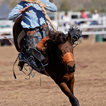 Cowboy rides a wildly bucking horse in bareback bronc event at a country rodeo