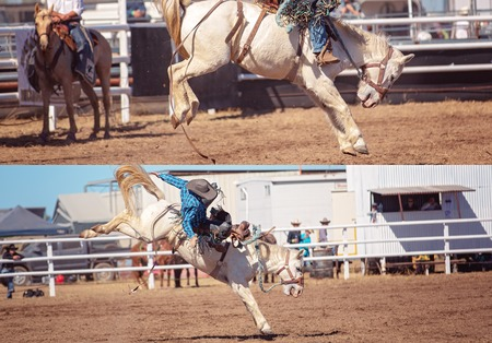 Collage of cowboy and horse competing in bucking saddle bronc event at country rodeo Stock Photo