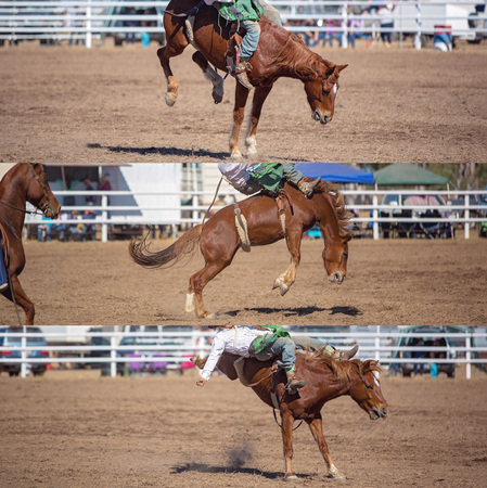 Collage of a cowboy riding a bucking bronco in the bareback bronc event at a country rodeo Reklamní fotografie