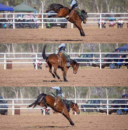 Collage of a cowboy riding a bucking horse in the saddle bronc event at a country rodeo Imagens