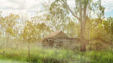 Old abandoned and falling down shack in Australia, seen through trees