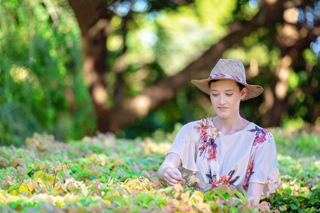 Beautiful young woman wearing straw hat examining hedge in garden with dappled light and late afternoon shade Stock Photo - 118429202