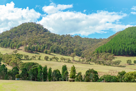 Road Trip - The rolling Australian countryside in rural New South Wales